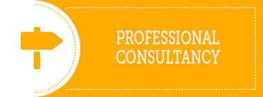 Professional Consultancy